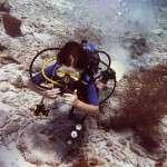 kids_diving10