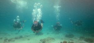 Diving Diving Diving