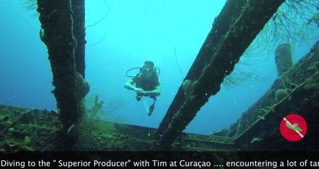 Superior diving