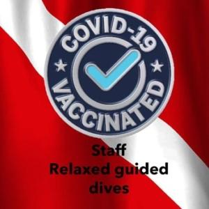 covid vaccinated